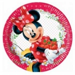 minnie-jam-packed-with-love-paper-plates